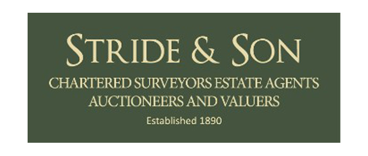 Stride And Son Logo 720px